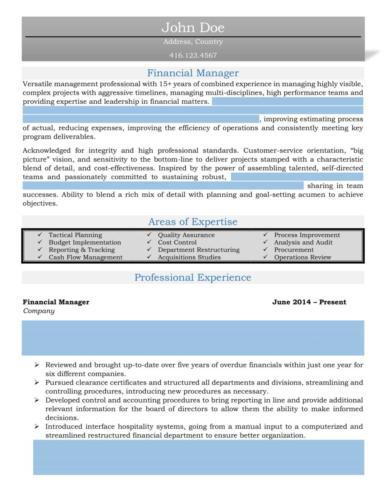 Management - Financial Manager Resume Sample-1