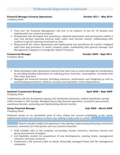 Management - Financial Manager Resume Sample-2